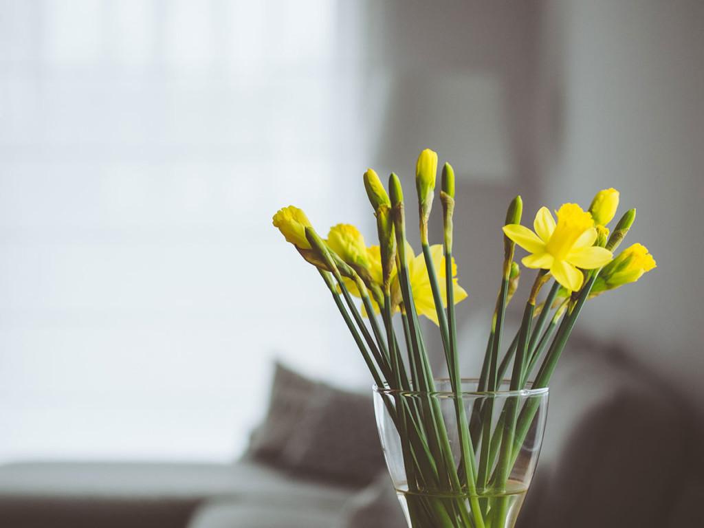 Decoración primaveral | JVJ Albarealty Inmobiliaria